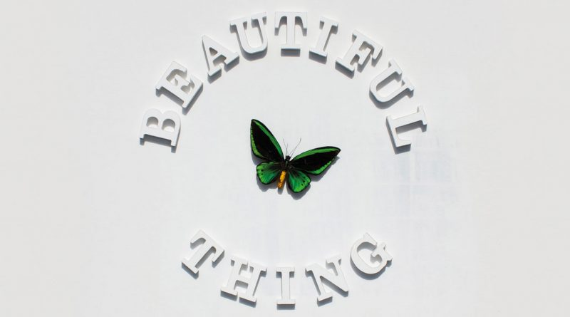 It's A Beautiful Thing - The Stone Roses
